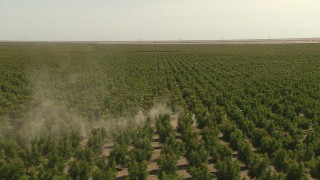 AI06_FRM_015 - 1080 stock footage aerial video orbiting a tractor passing rows of crops, Central Valley, California