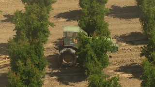 AI06_FRM_018 - 1080 stock footage aerial video flying over crops, revealing tractor, Central Valley, California