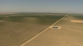 AI06_FRM_041 - 1080 stock footage aerial video ascending high over farmland, Central Valley, California
