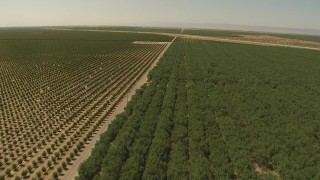AI06_FRM_078 - 1080 stock footage aerial video fly over orchard and pond, approach aqueduct, Central Valley, California
