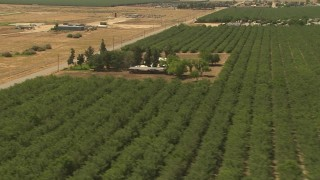 AI06_FRM_126 - 1080 stock footage aerial video orchards, country homes, revealing airfield, Central Valley, California
