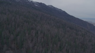 AK0001_0223 - 4K stock footage aerial video ascending the forested slope of the Chugach Mountains, Alaska