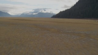 AK0001_0376 - 4K stock footage aerial video flying low over grassland, tilt up, revealing snow capped mountains, Portage, Alaska