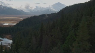 AK0001_0381 - 4K stock footage aerial video fly low over forested slope, approaching grassland, Kenai Mountains, Alaska
