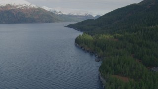 AK0001_0399 - 4K stock footage aerial video flying over wooded shoreline, Prince William Sound, Passage Canal, Alaska