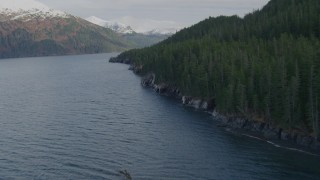 AK0001_0400 - 4K stock footage aerial video flying along forested shoreline, Passage Canal, Alaska