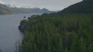 AK0001_0401 - 4K stock footage aerial video flying over forest, Passage Canal, Alaska