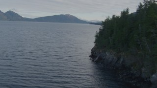 AK0001_0403 - 4K stock footage aerial video flying along forested shoreline, Prince William Sound, Passage Canal, Alaska