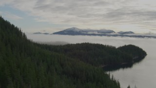 AK0001_0412 - 4K stock footage aerial video fly over forested hillside, reveal fog covered bay, Prince William Sound, Alaska