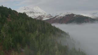 AK0001_0414 - 4K stock footage aerial video fly over forested hillside, bay covered in fog, Prince William Sound, Alaska