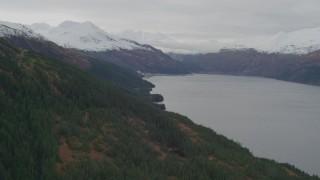 AK0001_0495 - 4K stock footage aerial video flying along wooded shoreline, approaching Whittier, Alaska