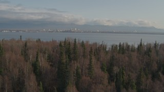 AK0001_0596 - 4K stock footage aerial video over trees, reveal Downtown Anchorage across inlet, Point MacKenzie, Alaska