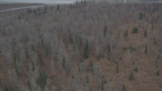 AK0001_0618 - 4K stock footage aerial video flying over trees, away from the Knik River, Alaska