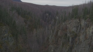 AK0001_0629 - 4K stock footage aerial video flying through deep river gorge, topped by forest, Birchwood, Alaska