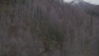 AK0001_0634 - Aerial stock footage of Following a river gorge, wooded hills, ascending trees, Birchwood, Alaska