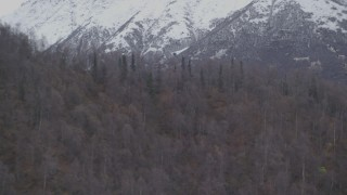 AK0001_0648 - 4K stock footage aerial video flying by wooded slopes by snow-covered Chugach Mountains, Alaska