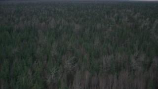 AK0001_0693