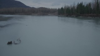 AK0001_0703 - 4K stock footage aerial video flying low over river, approaching trees, shore, winter, Knik River, Alaska