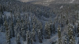 AK0001_0806 - 4K stock footage aerial video follow river through forest in snowy valley, Chugach Mountains, Alaska