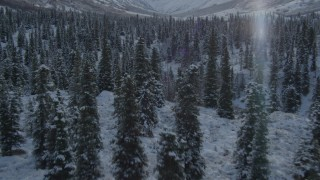 AK0001_0808 - 4K stock footage aerial video flying over snowy forested valley, reveal river, Chugach Mountains, Alaska