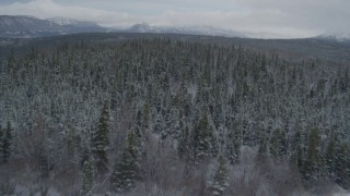 AK0001_0870 - 4K stock footage aerial video approach forested shoreline, snow-capped distant mountains, Bench Lake, Alaska