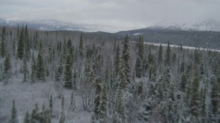 AK0001_0871 - 4K stock footage aerial video flying over snow covered forest during winter, Matanuska River Valley, Alaska