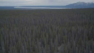 AK0001_0908 - 4K stock footage aerial video flying over a snow covered forest during winter, Alaskan Wilderness