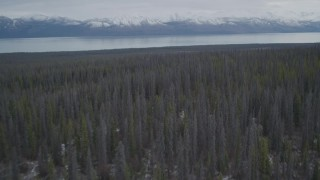 AK0001_0909 - 4K stock footage aerial video flying over forest toward snow-covered Chugach Mountains, Tazlina Lake, Alaska