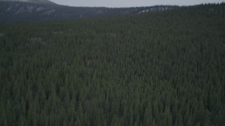 AK0001_0966 - 4K stock footage aerial video flying over wooded hills, during winter, Alaskan Wilderness