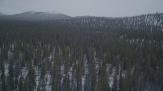 AK0001_0967 - 4K stock footage aerial video flying over snow-covered, wooded hills, Alaskan Wilderness