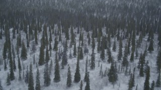 AK0001_0968 - 4K stock footage aerial video flying over snow-covered wooded hills, Alaskan Wilderness
