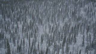 AK0001_0969 - 4K stock footage aerial video flying over snow-covered forests and wooded hills, Alaskan Wilderness