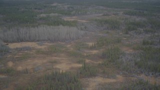AK0001_0974 - 4K stock footage aerial video fly over forest, reveal Trans-Alaskan Pipeline, during winter, Alaskan Wilderness