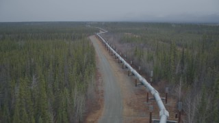 AK0001_0976 - 4K stock footage aerial video flying low along pipeline through forest during winter, Trans-Alaska Pipeline, Alaska