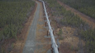 AK0001_0977 - 4K stock footage aerial video following pipeline through forest during winter, Trans-Alaska Pipeline, Alaska