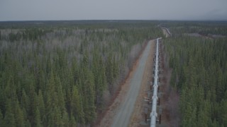 AK0001_0980 - 4K stock footage aerial video following pipeline through forest, during winter, Trans-Alaska Pipeline, Alaska