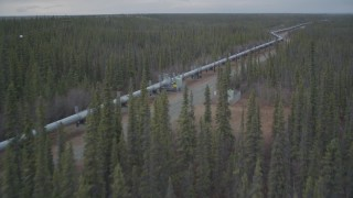 AK0001_0981 - 4K stock footage aerial video flying low over forest during winter revealing Trans-Alaska Pipeline, Alaska