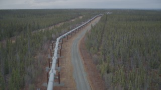 AK0001_0982 - 4K stock footage aerial video following pipeline through forest, during winter, Trans-Alaska Pipeline, Alaska