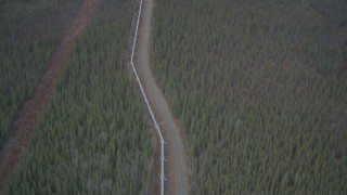 AK0001_0984 - 4K stock footage aerial video following pipeline, revealing forest during winter, Trans-Alaska Pipeline, Alaska