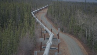 AK0001_0986 - 4K stock footage aerial video flying over pipeline through forest, during winter, Trans-Alaska Pipeline, Alaska