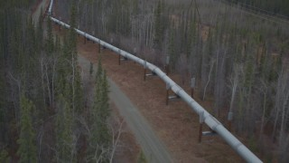 AK0001_0996 - 4K stock footage aerial video a reverse view of the pipeline through forest in winter, Trans-Alaska Pipeline, Alaska