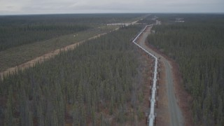 AK0001_1000 - 4K stock footage aerial video pan across and fly over pipeline through forest during winter, Trans-Alaska Pipeline, Alaska