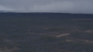 AK0001_1016 - 4K stock footage aerial video tilt from evergreen forest to reveal rain clouds, Alaskan Wilderness