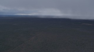 AK0001_1017 - 4K stock footage aerial video forest in the Alaskan Wilderness, reveal rain clouds
