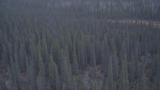 AK0001_1037 - 4K stock footage aerial video flying away from trees in the Alaskan Wilderness
