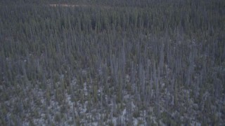 AK0001_1038 - 4K stock footage aerial video flying away from wetlands over snow covered forest, Alaskan Wilderness