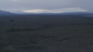 AK0001_1039 - 4K stock footage aerial video flying over forest towards snow capped mountains, Alaskan Wilderness