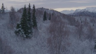 AK0001_1097 - 4K stock footage aerial video flying over snowy, wooded hills toward Talkeetna Mountains, Alaskan Wilderness