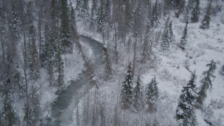 AK0001_1199 - 4K stock footage aerial video following a river cutting through snow covered forest, Chugach Mountains, Alaska