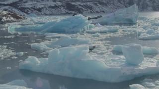 AK0001_1441 - 4K stock footage aerial video glacial ice on Inner Lake George, Alaska in snow